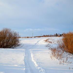 Дачник везде проложит дорогу и оставит следы, порой непонятные...