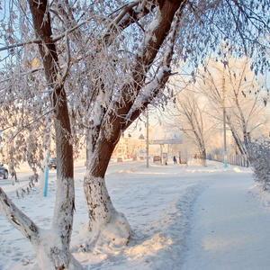 Белая зима с солнечным отливом