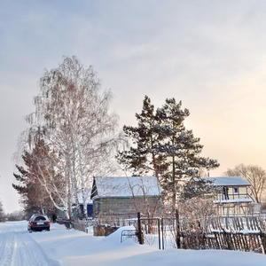 Зимний дачный этюд