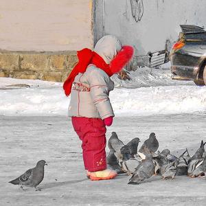 Покормить голубей зимой - святое дело!
