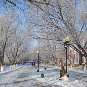 В зимней дымке деревА...