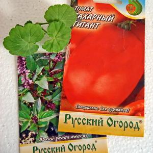 Очень довольна их семенами!