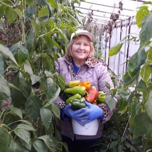 Урожай ноября - чудные перцы....