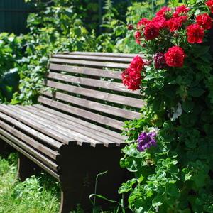 Диван в саду