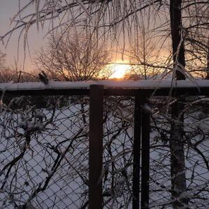 Восход, январь 2016