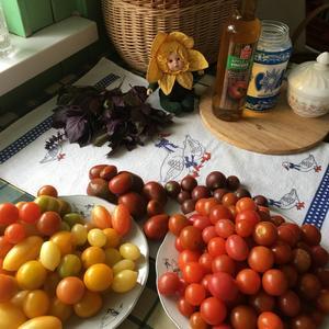 Приготовление к заготовке Томаты с базиликом