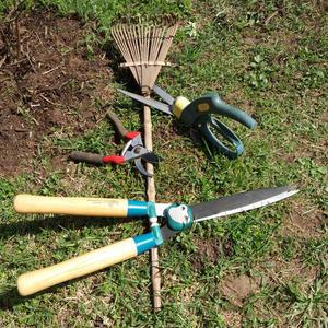 Все подрежем и уберем - кусторез, ножницы для травы, секатор и грабельки