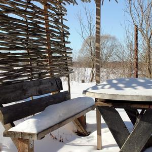 В саду старая скамейка впала в дрёму зимних дней...