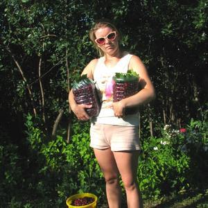 Это урожай вишни