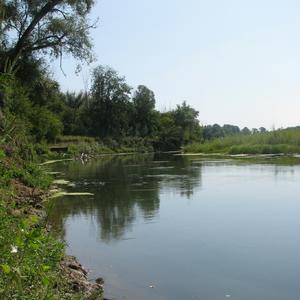 Обрывистый берег Урала