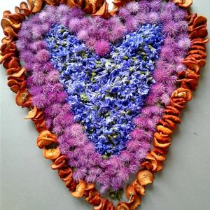 Лекарственное сырьё из цветков Расторопши и Цикория