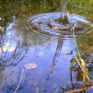 Отражение всплеска воды