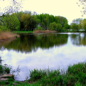 Майский день у озера 2