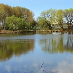 Весенний водоем