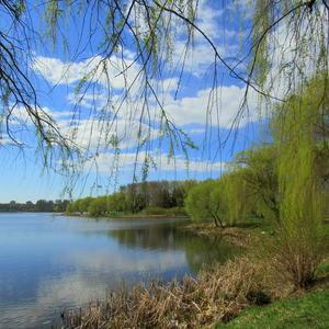 Озерная весна
