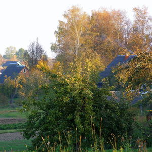 Деревенский октябрь