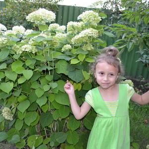 Зеленая принцесса