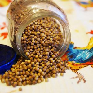Кориандр - храню семена в баночке из-под детского питания - спасибо внучку и его родителям!