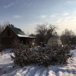 Рановато ещё на нашей даче тепличный сезон открывать