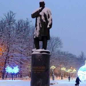 17 января - День рождения Н. Е. Жуковского