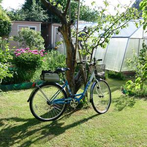 На лужайке в саду. Велосипед отдыхает, хозяйка работает!