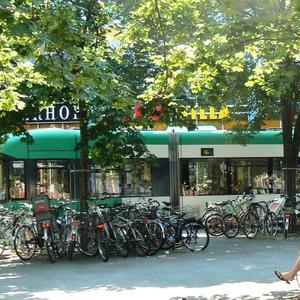 Лето! Пересесть с трамвая на велосипед и уехать на дачу!