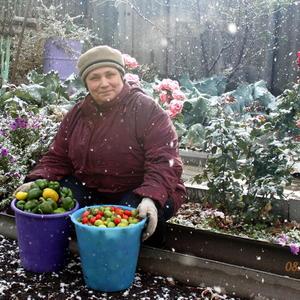 Хотите верьте, а хотите нет, я урожай под снегом собирала