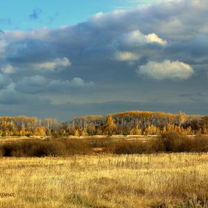 Такая яркая и золотая Осень!