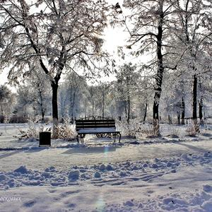 В парке старая скамейка впала в дрёму зимних дней, белоснежная шубейка согревает спину ей...