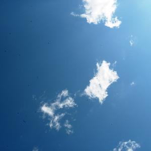 Ах, небо, смотреть бесконечно глаза не устанут