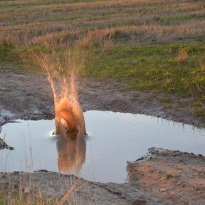 Взрыв воды от камушка