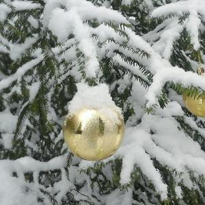 Под снегом...