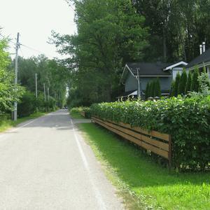 Наша тихая улица. Живая изгородь у соседей