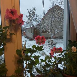 Дома тепло, а за окном зима