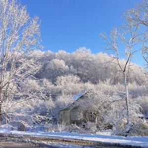 Краснодарская зима