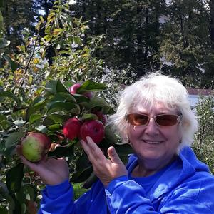 Хорошие яблочки, радость семье