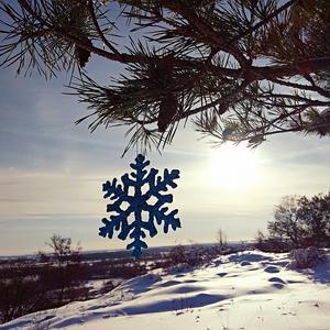 Снежинка тет-а-тет с солнцем!
