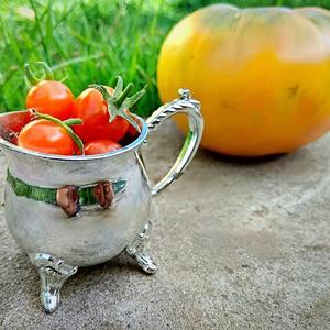 Для томатной феи