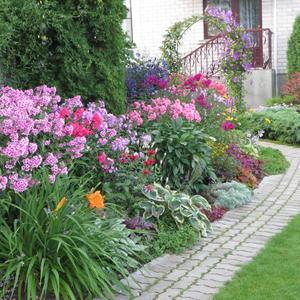 Дорожка, обрамленная красивыми цветами