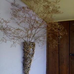 Сухоцветы на веранде