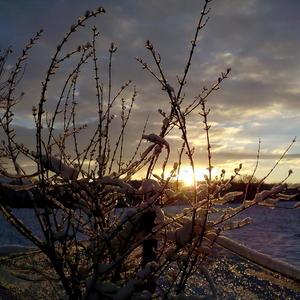 Рассвет в зимней хрустальной сказке
