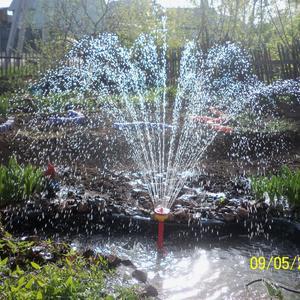 Брызгами фонтана польем все растюшки вокруг водоёма