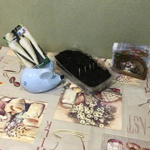 И мышонок сажает семена СеДеК