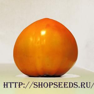Томат Оранжевая клубника
