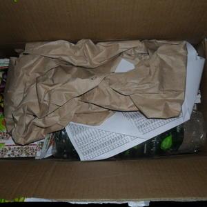 Содержимое посылки - семена и подарки