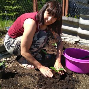 В теплый солнечный денёк посадила кабачок