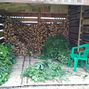 Для баньки. Заготавливаем дрова и дубовые венички