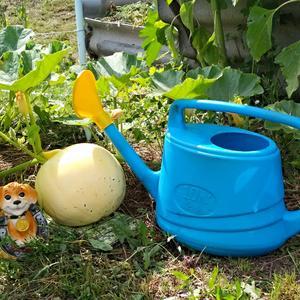 Огородик поливай! Будет добрый урожай!