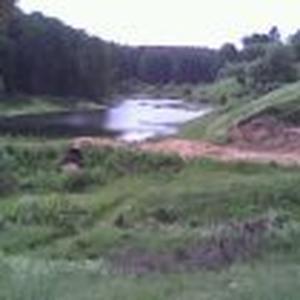 Деревня, пруд