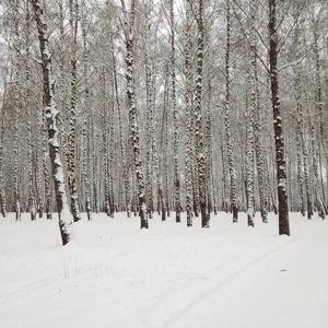 Белым снегом...